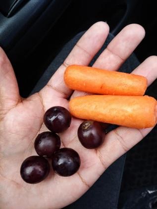 handful of fruit